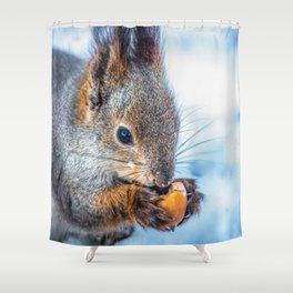 Ice age- the happy end 2 Shower Curtain