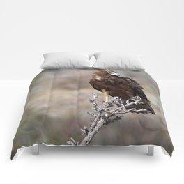 Birds of Namibia Comforters