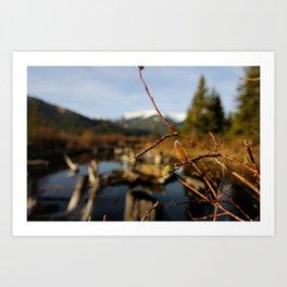 Vermilion Lakes Early Morning - Banff Art Print