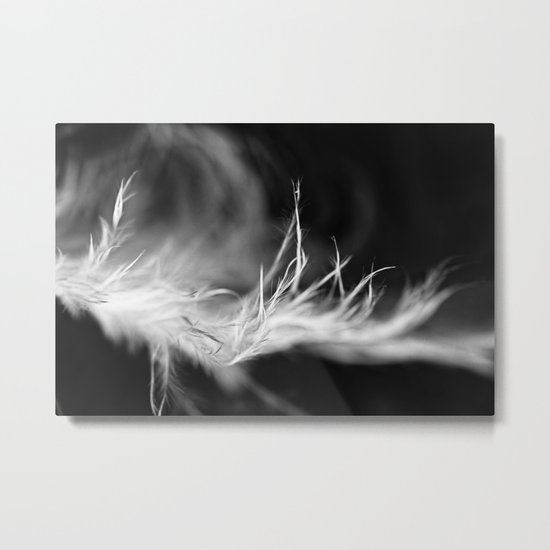 light and feathery Metal Print