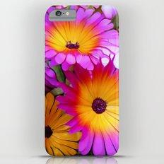 FlowerPower Slim Case iPhone 6 Plus