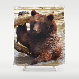 Majestic Large Grown Grizzly Bear Clinging Onto Fleetwood In Lake Ultra HD Shower Curtain