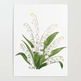 white lily of valley Poster