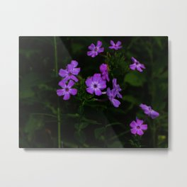 Purple... Metal Print