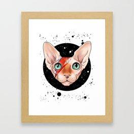 Sphynx Bowie Framed Art Print