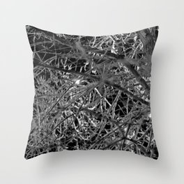 Damen at Night Throw Pillow
