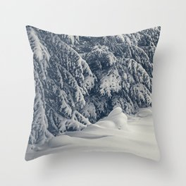 Beauty of Winter 17 Throw Pillow