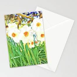Bright Spring Narcissus Stationery Cards