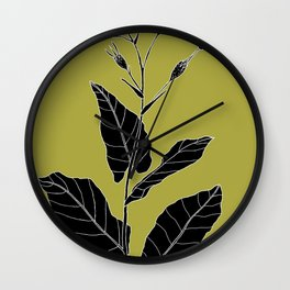 Rock Pituri (Also known as Bone Marrow Tobacco) - Nicotiana gossei Wall Clock