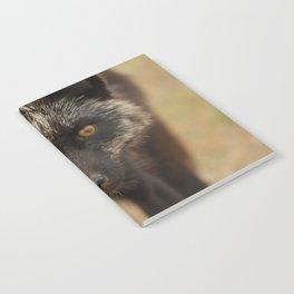 Amber Eyes Notebook
