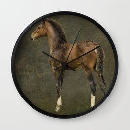 Bred for Beauty dk Wall Clock