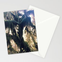 Hall of Moss Stationery Cards