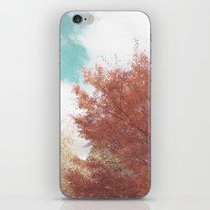 Beautiful Day in Autumn iPhone & iPod Skin