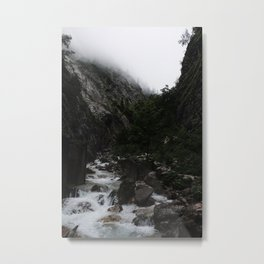 Into the Wild VII Metal Print