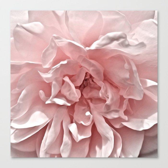 Pink Blush Rose Leinwanddruck