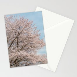 cherry blossom and blue sky Stationery Cards