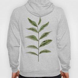 Olive Green Botanical (Color) Hoody