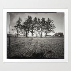 Pinhole Trees Art Print