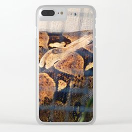 Sleeping Snake Clear iPhone Case