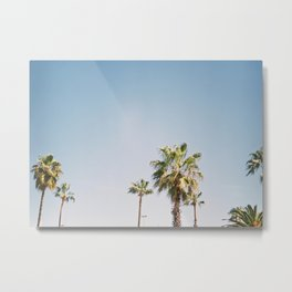 Palmtrees in Barcelona Europe | Blue Sky, Green Palm Trees Tropical vibe Metal Print