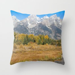 Old Grand and the Snake Throw Pillow