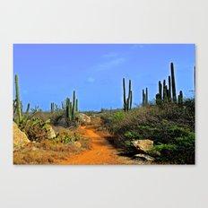 Desert Pathway Canvas Print