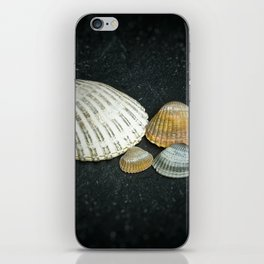 Beach treasures iPhone Skin