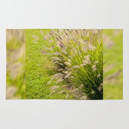 Grass clump Pennisetum alopecuroides Rug