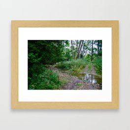 Creek Clearing Framed Art Print