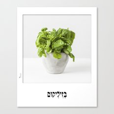 Basil hebrew letters poster Canvas Print