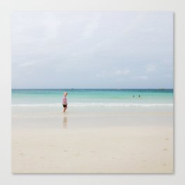 The Recluse Canvas Print