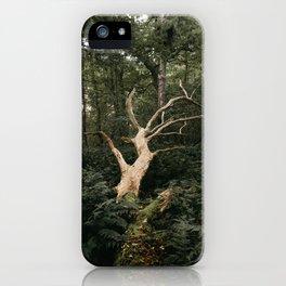 Sprawling Dead Tree iPhone Case