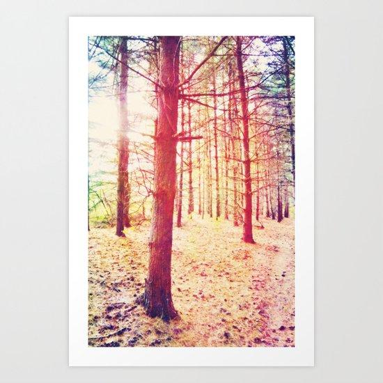 Fantasy in the Pines Art Print