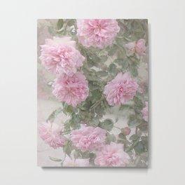 Rosen Blüten Metal Print