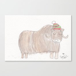 Musk Ox Canvas Print