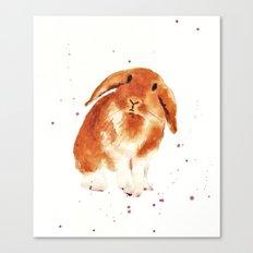 bunny, rabbit painting, lop eared bunny, fluffy bunnykins, bunny lover gift Canvas Print
