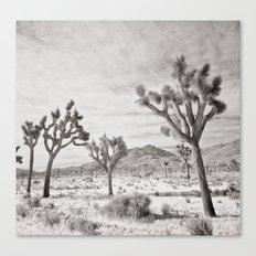 Joshua Tree Grey By CREYES Canvas Print