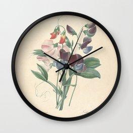 Flower lathyrus odoratus10 Wall Clock