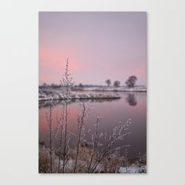 Winter Sunset At River Bank Canvas Print