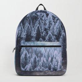 Winter Atmosphere Backpack