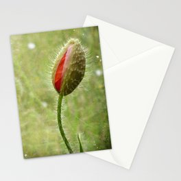 Shy Poppy Stationery Cards