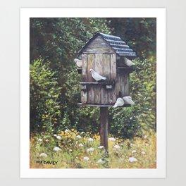 White Doves using a Dovecote  Art Print
