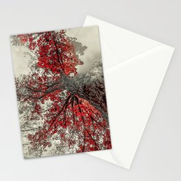 Widen Stationery Cards