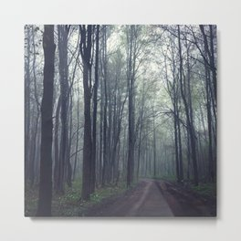 Getting Lost on Misty Forest Trails Metal Print
