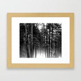 Perfect Silence  Framed Art Print
