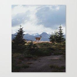 Surprise Encounter Canvas Print