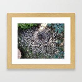 Magpie Nest Framed Art Print