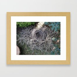 Magpie Nest Framed Art Print