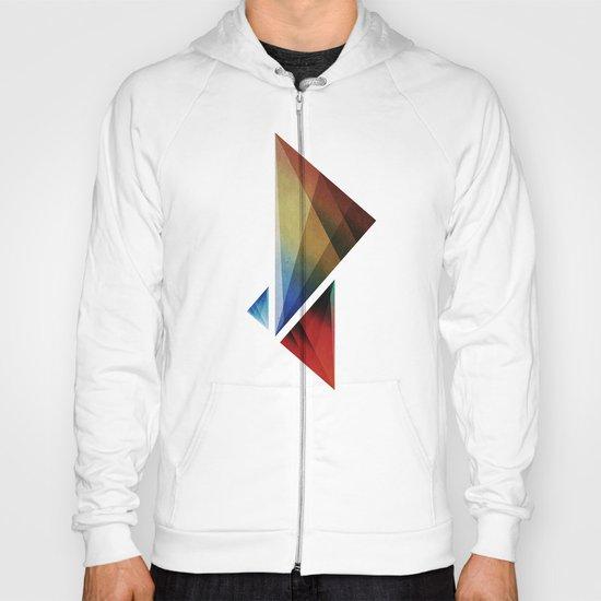 Triangularity Means We Dream in Geometric Colors Hoody