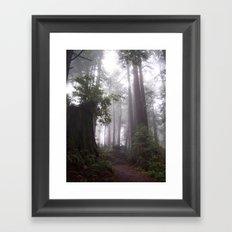 Misty Forest Framed Art Print